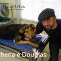 A-história-da-Athena-e-a-clínica-veterinária-Flor-de-Lótus