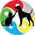 A-cromoterapia-agora-também-na-medicina-veterinária!