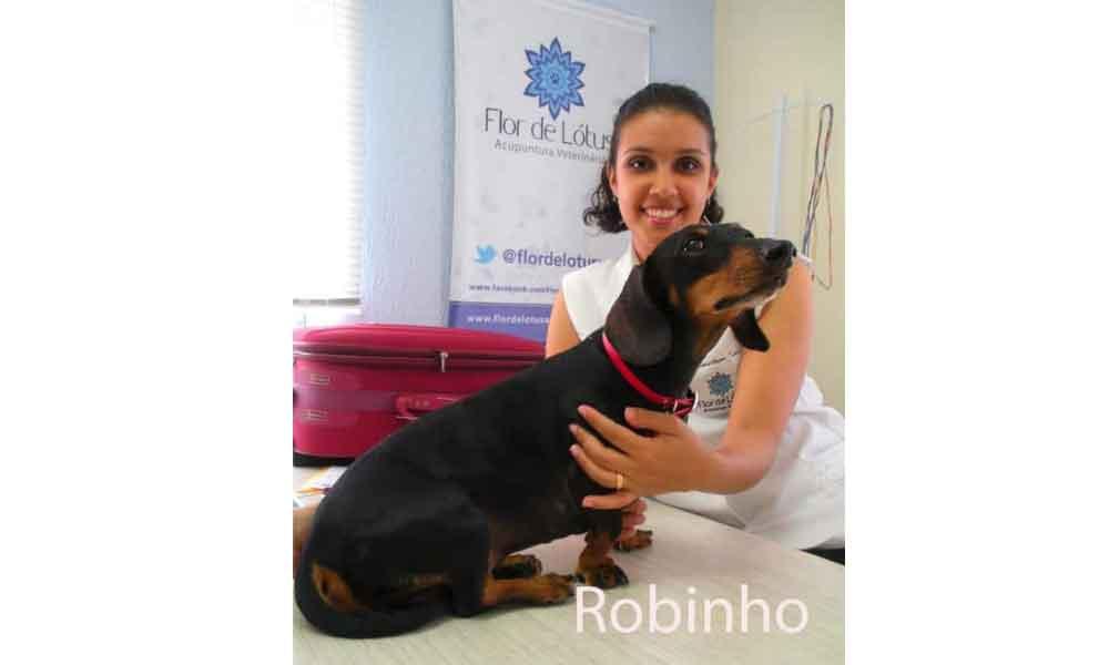 A-história-da-Elizabeth-e-Robinho
